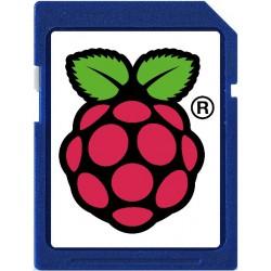 Carte SD 4Go Raspberry Pi installé